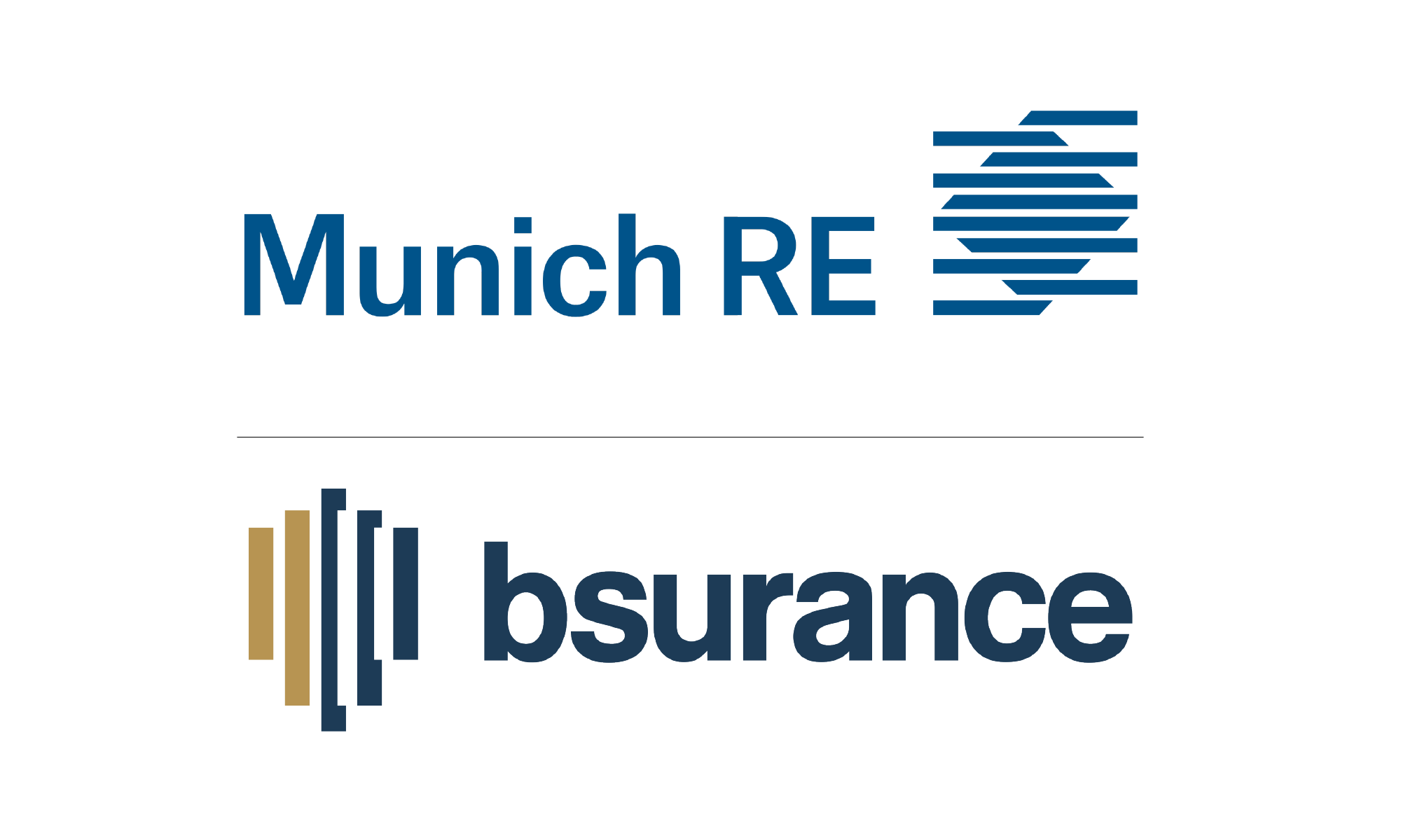 Strategic partnership with Munich Re